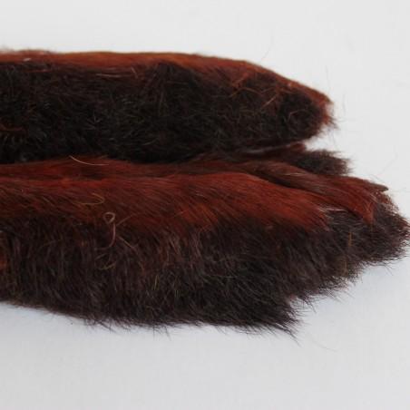 Pattes de lièvre brown